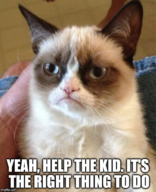 Grumpy Cat Meme | YEAH, HELP THE KID. IT'S THE RIGHT THING TO DO | image tagged in memes,grumpy cat | made w/ Imgflip meme maker