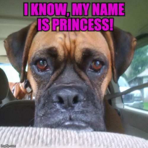 I KNOW, MY NAME IS PRINCESS! | made w/ Imgflip meme maker