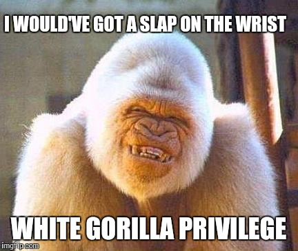 Zoonanigans!  | I WOULD'VE GOT A SLAP ON THE WRIST WHITE GORILLA PRIVILEGE | image tagged in whit gorrila smile | made w/ Imgflip meme maker