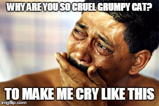 WHY ARE YOU SO CRUEL GRUMPY CAT? TO MAKE ME CRY LIKE THIS | made w/ Imgflip meme maker