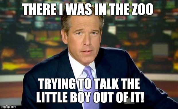 Brian Williams Was There Meme | THERE I WAS IN THE ZOO TRYING TO TALK THE LITTLE BOY OUT OF IT! | image tagged in memes,brian williams was there | made w/ Imgflip meme maker