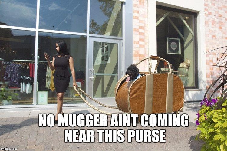 NO MUGGER AINT COMING NEAR THIS PURSE | made w/ Imgflip meme maker
