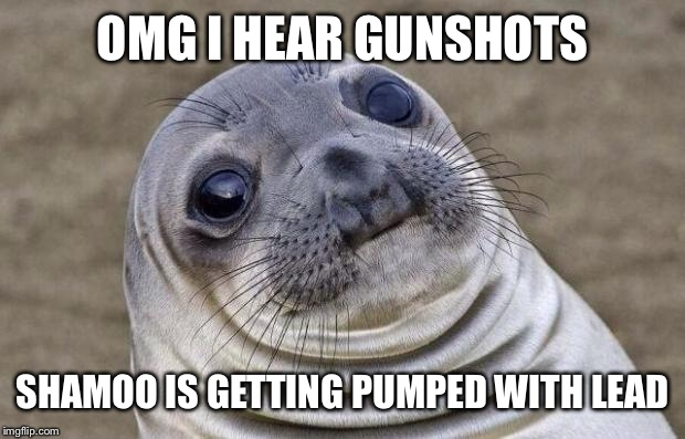 Awkward Moment Sealion Meme | OMG I HEAR GUNSHOTS SHAMOO IS GETTING PUMPED WITH LEAD | image tagged in memes,awkward moment sealion | made w/ Imgflip meme maker