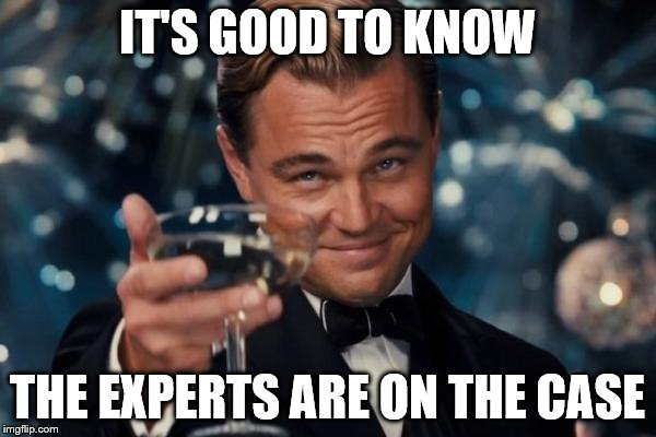 Leonardo Dicaprio Cheers Meme | IT'S GOOD TO KNOW THE EXPERTS ARE ON THE CASE | image tagged in memes,leonardo dicaprio cheers | made w/ Imgflip meme maker