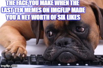 Meming isn't fun when everything you make goes by unnoticed. | THE FACE YOU MAKE WHEN THE LAST TEN MEMES ON IMGFLIP MADE YOU A NET WORTH OF SIX LIKES | image tagged in memes,sad dog,not funny,meming,the face you make | made w/ Imgflip meme maker