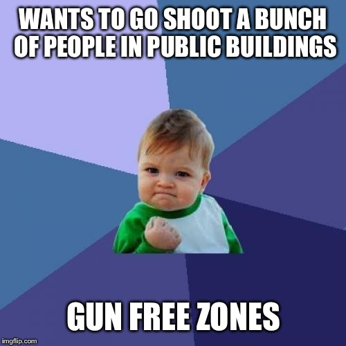 Success Kid Meme | WANTS TO GO SHOOT A BUNCH OF PEOPLE IN PUBLIC BUILDINGS GUN FREE ZONES | image tagged in memes,success kid | made w/ Imgflip meme maker