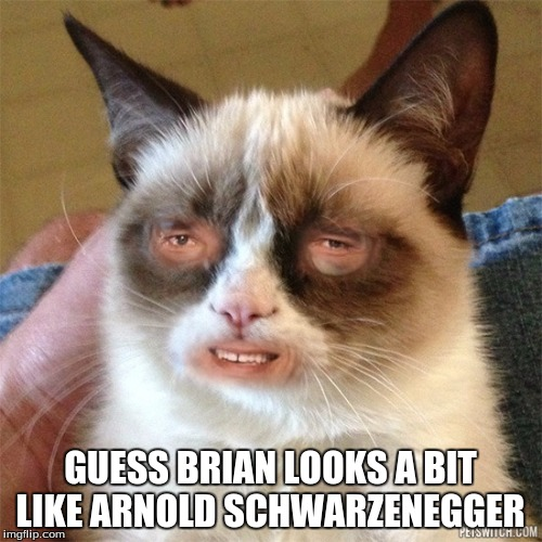 Grumpy Cat High | GUESS BRIAN LOOKS A BIT LIKE ARNOLD SCHWARZENEGGER | image tagged in grumpy cat high | made w/ Imgflip meme maker