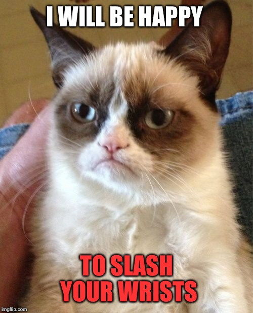 Grumpy Cat Meme | I WILL BE HAPPY TO SLASH YOUR WRISTS | image tagged in memes,grumpy cat | made w/ Imgflip meme maker