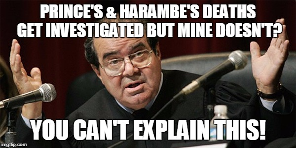Celebrities and animals are apparently more important than a Supreme Court Justice | PRINCE'S & HARAMBE'S DEATHS GET INVESTIGATED BUT MINE DOESN'T? YOU CAN'T EXPLAIN THIS! | image tagged in harambe,prince,scalia | made w/ Imgflip meme maker