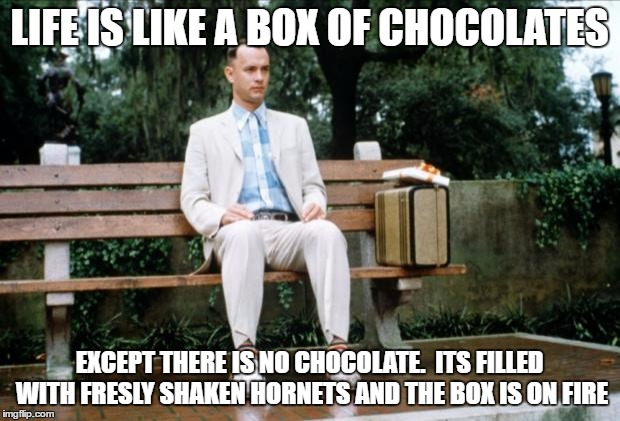 Forrest Gump |  LIFE IS LIKE A BOX OF CHOCOLATES; EXCEPT THERE IS NO CHOCOLATE.  ITS FILLED WITH FRESLY SHAKEN HORNETS AND THE BOX IS ON FIRE | image tagged in forrest gump | made w/ Imgflip meme maker