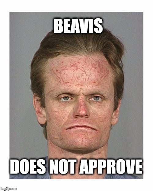 BEAVIS; DOES NOT APPROVE | image tagged in beavis | made w/ Imgflip meme maker