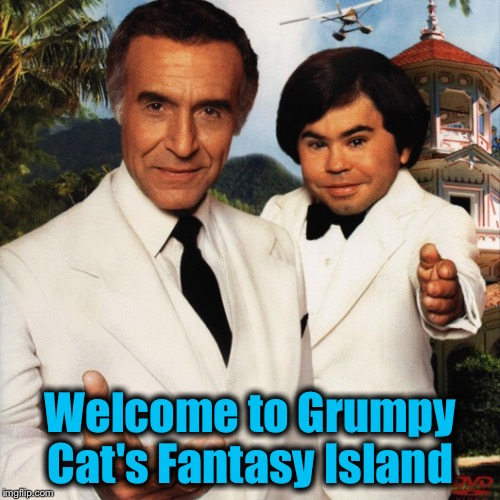 Welcome to Grumpy Cat's Fantasy Island | made w/ Imgflip meme maker