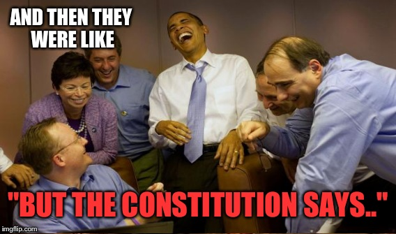 "AND THEN THEY WERE LIKE ""BUT THE CONSTITUTION SAYS.."" 