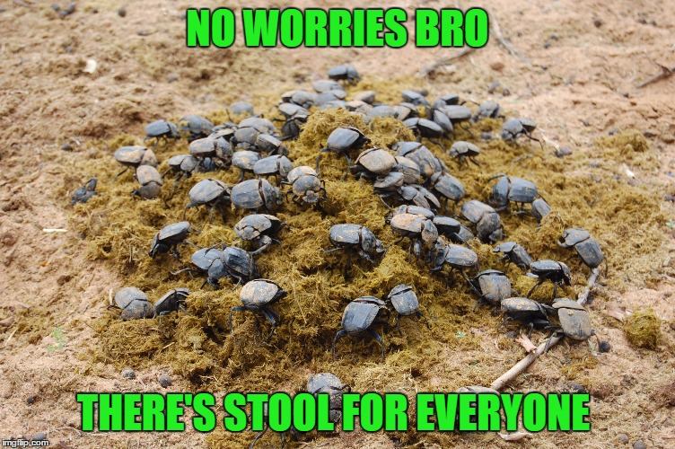 NO WORRIES BRO THERE'S STOOL FOR EVERYONE | made w/ Imgflip meme maker
