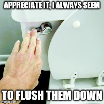 APPRECIATE IT, I ALWAYS SEEM TO FLUSH THEM DOWN | made w/ Imgflip meme maker