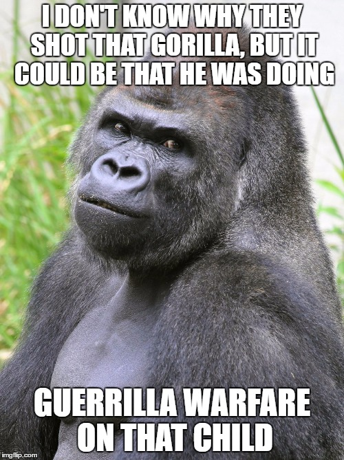 GET IT? Since guerrilla sounds like gorilla. im back btw and this is my return | I DON'T KNOW WHY THEY SHOT THAT GORILLA, BUT IT COULD BE THAT HE WAS DOING GUERRILLA WARFARE ON THAT CHILD | image tagged in hot gorilla,memes | made w/ Imgflip meme maker