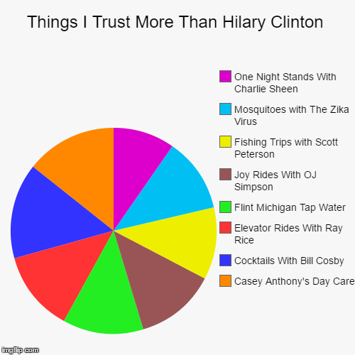 Things I Trust More Than Hilary Clinton | Casey Anthony's Day Care, Cocktails With Bill Cosby, Elevator Rides With Ray Rice, Flint Michigan  | image tagged in funny,pie charts | made w/ Imgflip pie chart maker