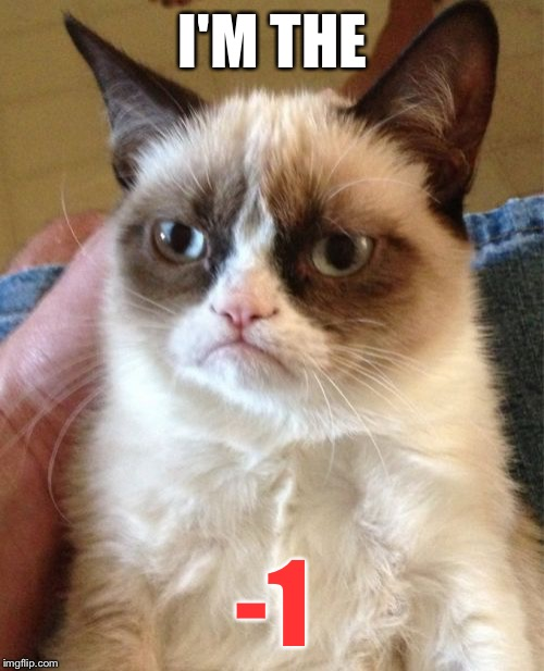 Grumpy Cat Meme | I'M THE -1 | image tagged in memes,grumpy cat | made w/ Imgflip meme maker