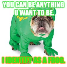 YOU CAN BE ANYTHING U WANT TO BE. I IDENTIFY AS A FROG. | made w/ Imgflip meme maker