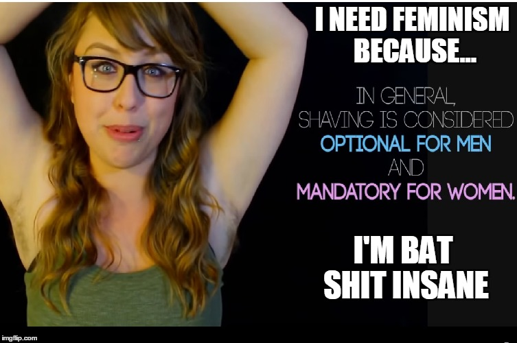 We've Come So Far... | I NEED FEMINISM BECAUSE... I'M BAT SHIT INSANE | image tagged in feminazi | made w/ Imgflip meme maker