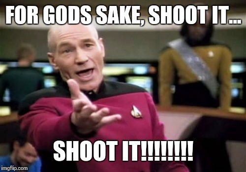 Picard Wtf Meme | FOR GODS SAKE, SHOOT IT... SHOOT IT!!!!!!!! | image tagged in memes,picard wtf | made w/ Imgflip meme maker