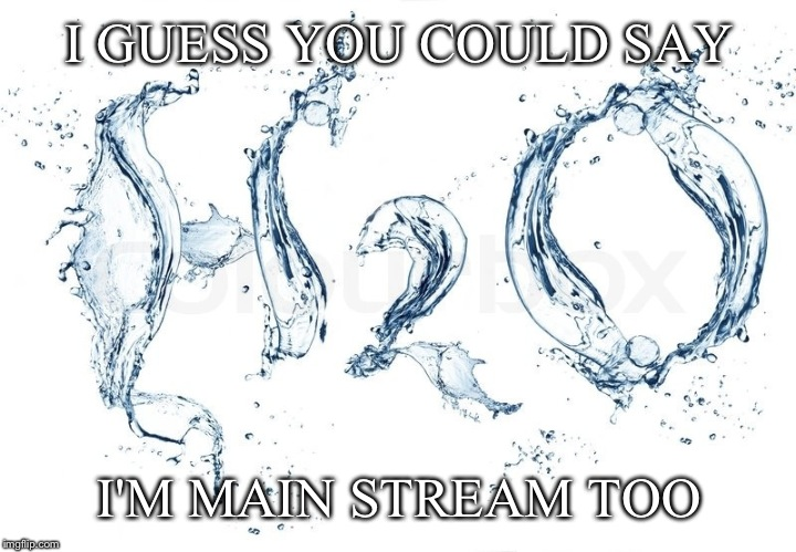 I GUESS YOU COULD SAY I'M MAIN STREAM TOO | made w/ Imgflip meme maker