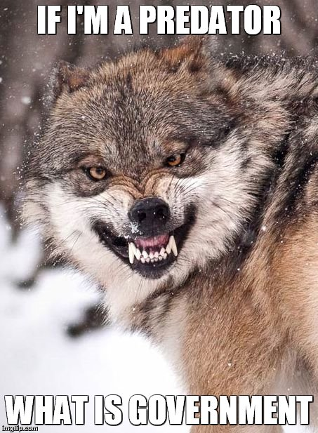 Angry Wolf | IF I'M A PREDATOR WHAT IS GOVERNMENT | image tagged in angry wolf | made w/ Imgflip meme maker