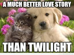 Harmony | A MUCH BETTER LOVE STORY THAN TWILIGHT | image tagged in memes,funny memes,cats and dogs living together | made w/ Imgflip meme maker