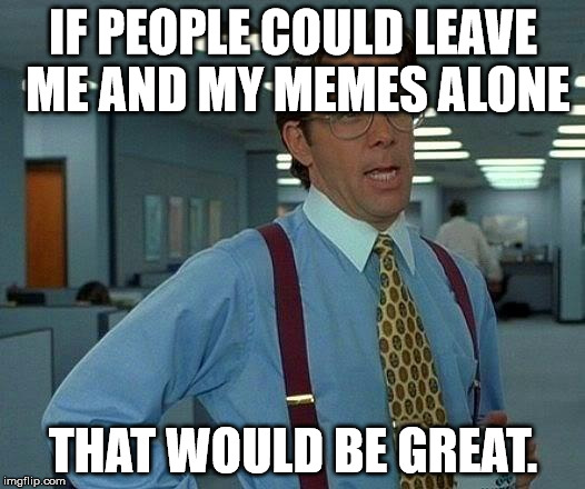 IF PEOPLE COULD LEAVE ME AND MY MEMES ALONE THAT WOULD BE GREAT. | image tagged in memes,that would be great | made w/ Imgflip meme maker