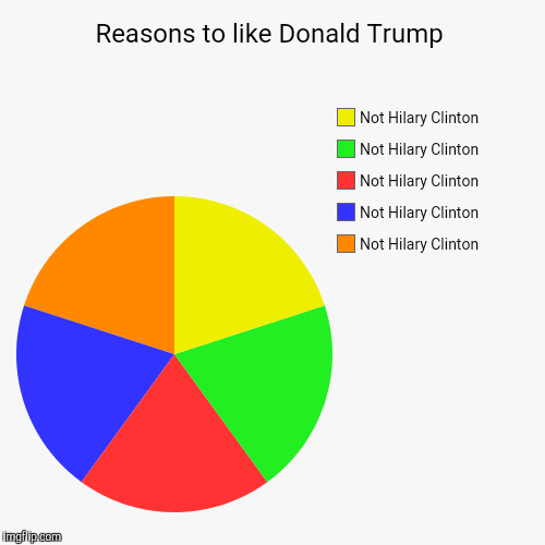 Trump vs Clinton | Reasons to like Donald Trump | Not Hilary Clinton, Not Hilary Clinton, Not Hilary Clinton, Not Hilary Clinton, Not Hilary Clinton | image tagged in funny,pie charts | made w/ Imgflip pie chart maker