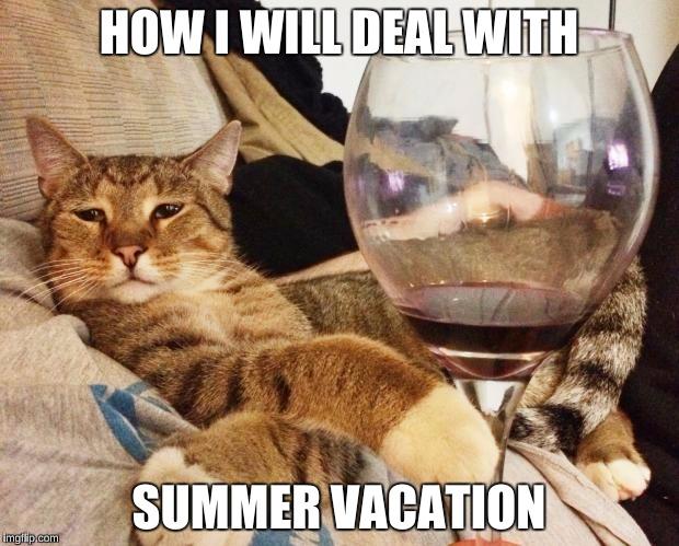 Wine Cat Imgflip