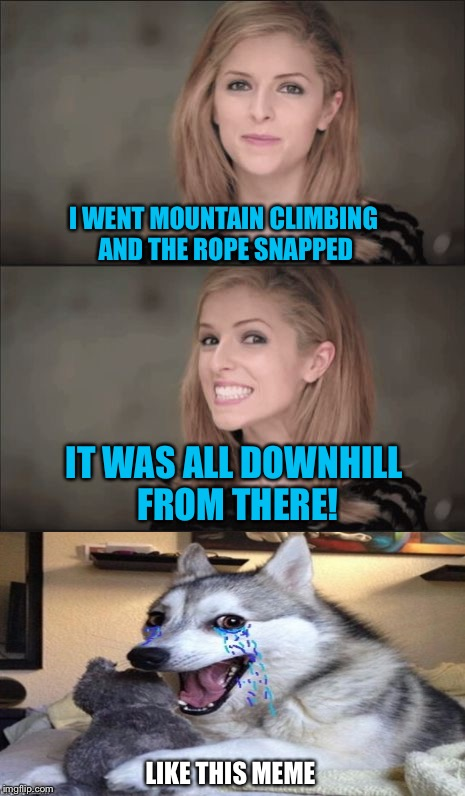 How high was she? | I WENT MOUNTAIN CLIMBING AND THE ROPE SNAPPED LIKE THIS MEME IT WAS ALL DOWNHILL FROM THERE! | image tagged in memes,bad pun anna kendrick,bad pun dog,bad joke,you laughed anyways,lolz | made w/ Imgflip meme maker