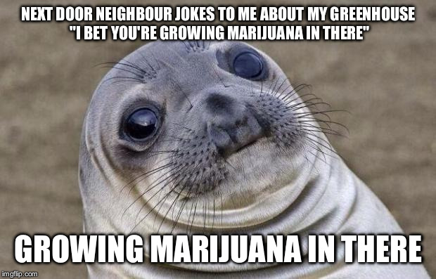"Awkward Moment Sealion Meme | NEXT DOOR NEIGHBOUR JOKES TO ME ABOUT MY GREENHOUSE ""I BET YOU'RE GROWING MARIJUANA IN THERE"" GROWING MARIJUANA IN THERE 