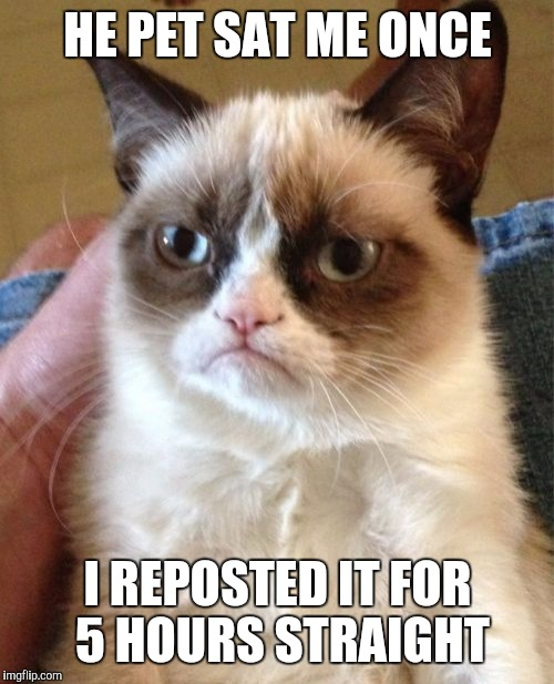 Grumpy Cat Meme | HE PET SAT ME ONCE I REPOSTED IT FOR 5 HOURS STRAIGHT | image tagged in memes,grumpy cat | made w/ Imgflip meme maker