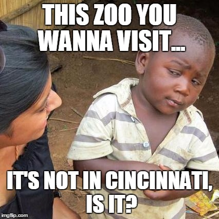 Skeptical Zoo | THIS ZOO YOU WANNA VISIT... IT'S NOT IN CINCINNATI, IS IT? | image tagged in memes,third world skeptical kid,gorilla,zoo,cincinnati,cincinnati zoo | made w/ Imgflip meme maker