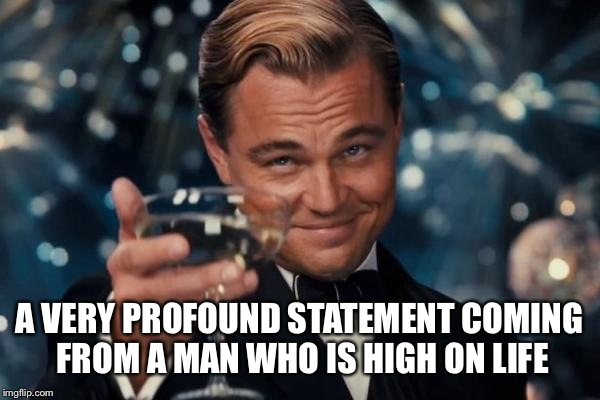 Leonardo Dicaprio Cheers Meme | A VERY PROFOUND STATEMENT COMING FROM A MAN WHO IS HIGH ON LIFE | image tagged in memes,leonardo dicaprio cheers | made w/ Imgflip meme maker