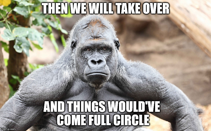 THEN WE WILL TAKE OVER AND THINGS WOULD'VE COME FULL CIRCLE | made w/ Imgflip meme maker