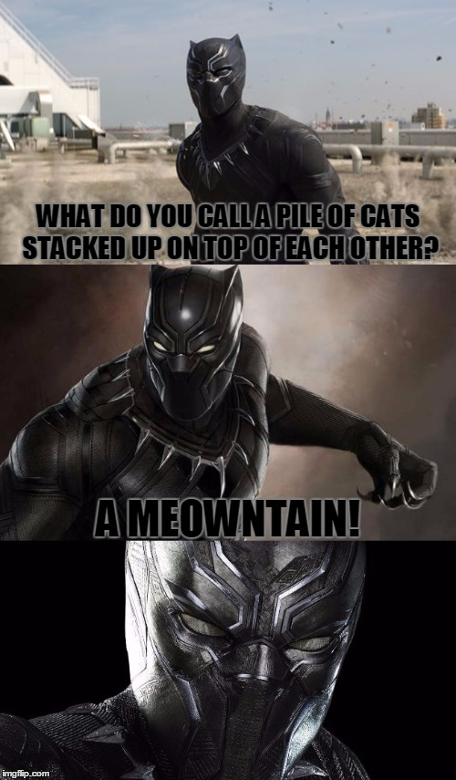 Bad Pun Black Panther, I Just Saw Civil War Too, Great Movie! |  WHAT DO YOU CALL A PILE OF CATS STACKED UP ON TOP OF EACH OTHER? A MEOWNTAIN! | image tagged in bad pun black panther,memes,funny,bad pun,black panther,animals | made w/ Imgflip meme maker