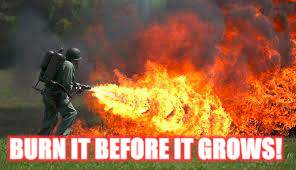 BURN IT BEFORE IT GROWS! | made w/ Imgflip meme maker
