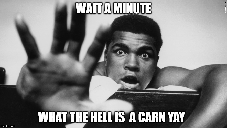 WAIT A MINUTE WHAT THE HELL IS  A CARN YAY | made w/ Imgflip meme maker