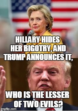 two turds | HILLARY HIDES HER BIGOTRY, AND TRUMP ANNOUNCES IT, WHO IS THE LESSER OF TWO EVILS? | image tagged in two turds | made w/ Imgflip meme maker