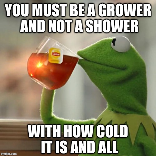 But Thats None Of My Business Meme | YOU MUST BE A GROWER AND NOT A SHOWER WITH HOW COLD IT IS AND ALL | image tagged in memes,but thats none of my business,kermit the frog | made w/ Imgflip meme maker