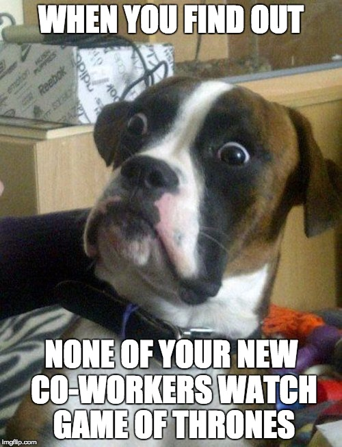 WHEN YOU FIND OUT; NONE OF YOUR NEW CO-WORKERS WATCH GAME OF THRONES | image tagged in shocked doggy | made w/ Imgflip meme maker