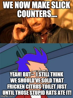 Futurama & Dangles' Shop Argument |  WE NOW MAKE SLICK COUNTERS.... YEAH! BUT--  I STILL THINK WE SHOULD'VE SOLD THAT FRICKEN CITRUS TOILET JUST UNTIL THOSE STUPID RATS ATE IT! | image tagged in memes,funny,shop,argument | made w/ Imgflip meme maker