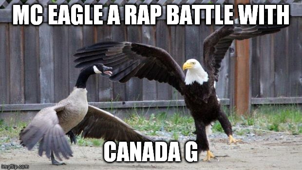 Bird Rap battle |  MC EAGLE A RAP BATTLE WITH; CANADA G | image tagged in eagle,goose,rap battle | made w/ Imgflip meme maker