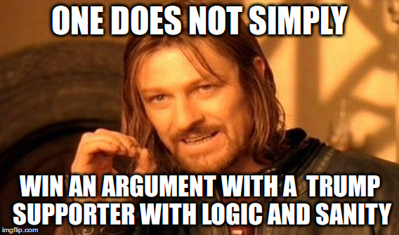 One Does Not Simply | ONE DOES NOT SIMPLY WIN AN ARGUMENT WITH A  TRUMP SUPPORTER WITH LOGIC AND SANITY | image tagged in memes,one does not simply | made w/ Imgflip meme maker