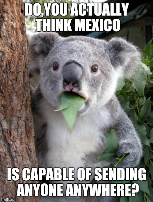 DO,YOU ACTUALLY THINK MEXICO IS CAPABLE OF SENDING ANYONE ANYWHERE? | made w/ Imgflip meme maker