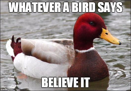 WHATEVER A BIRD SAYS BELIEVE IT | made w/ Imgflip meme maker