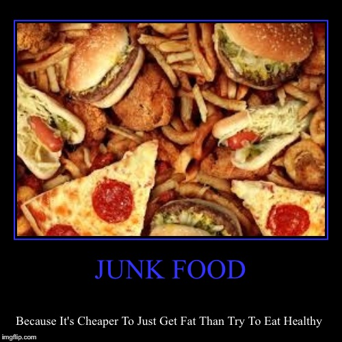 JUNK FOOD | Because It's Cheaper To Just Get Fat Than Try To Eat Healthy | image tagged in funny,demotivationals | made w/ Imgflip demotivational maker