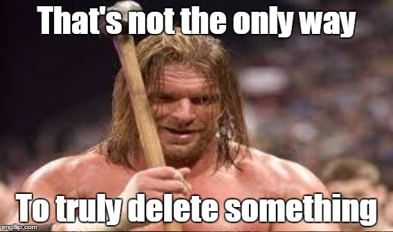 That's not the only way To truly delete something | made w/ Imgflip meme maker